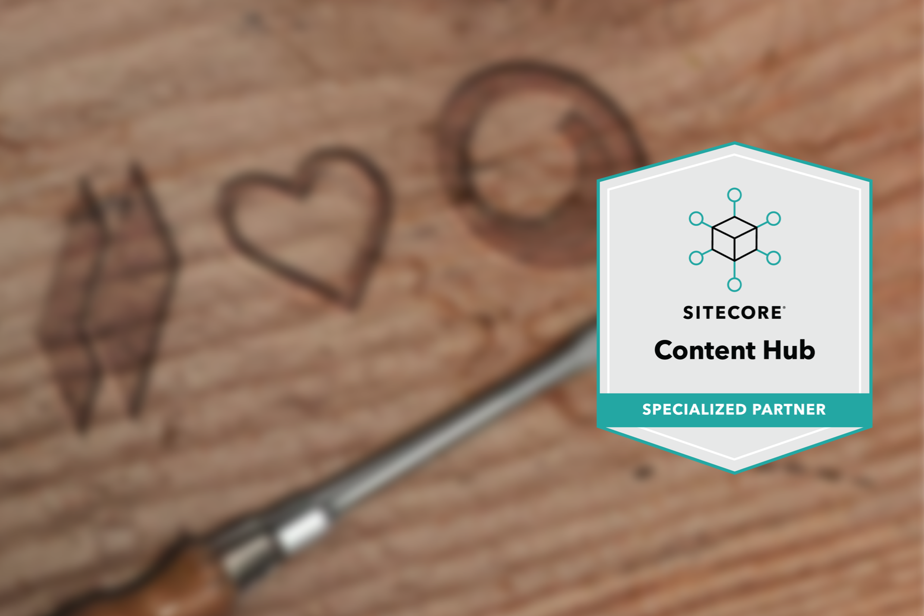 netzkern loves Sitecore Content Hub