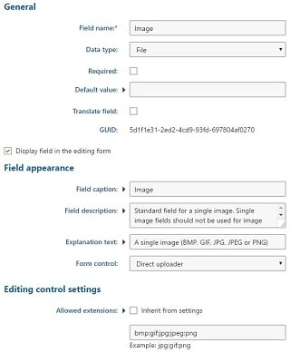 Kentico 10 File für einzelne Bilder
